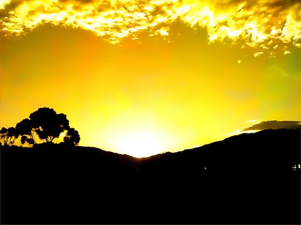 Sunrise cresting over the silhouette of a tree upon a hill (Medellín) by Hugo Quintero