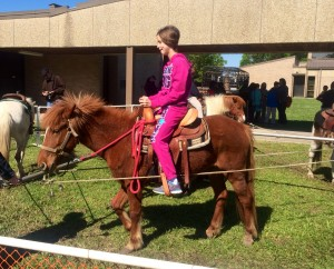 Lindsay rides in a horse-drawn cart